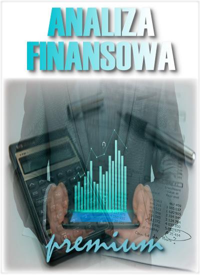 program_analiza_finansowa_premium