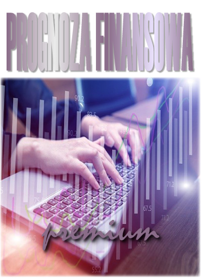 program_prognoza_finansowa_premium