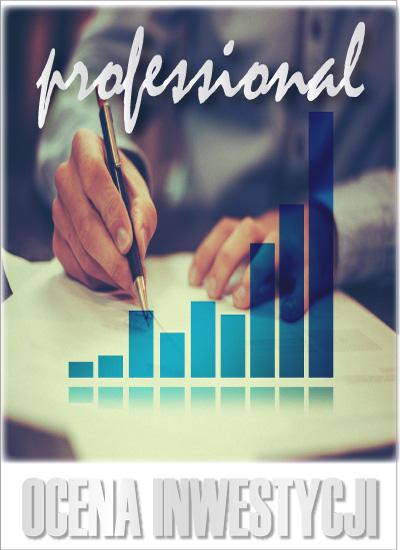 program_ocena_inwestycji_professional